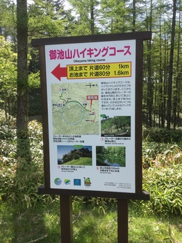 しらびそハイキングコース.jpg
