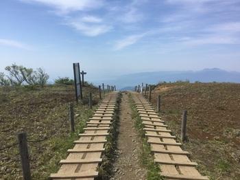 下山道1.JPG