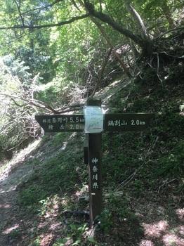 丹沢登山道11.JPG