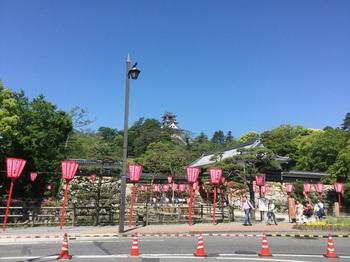 遠くから高知城.JPG